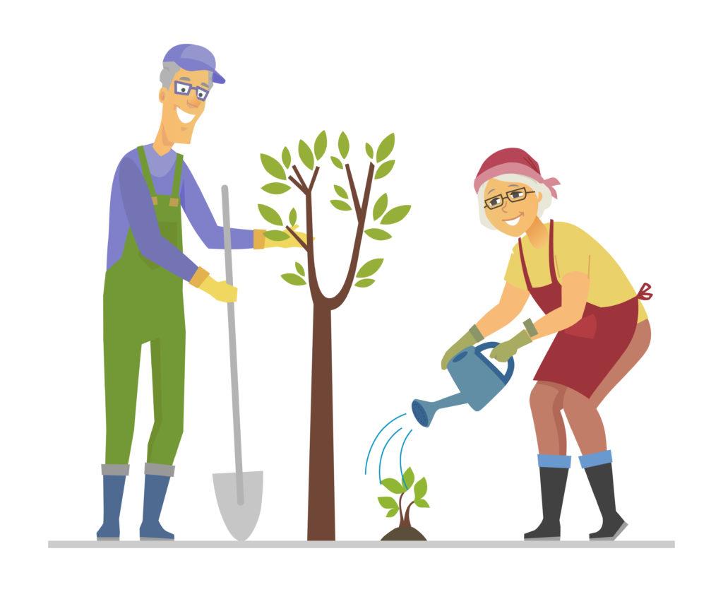 Экопроект Почтабанка «Подари лес другу!»